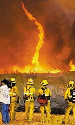 Tornado Api