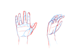 Drawing Hands Step 5