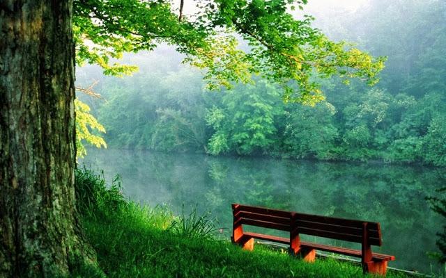 скамейка рядом с водоёмом очень красиво