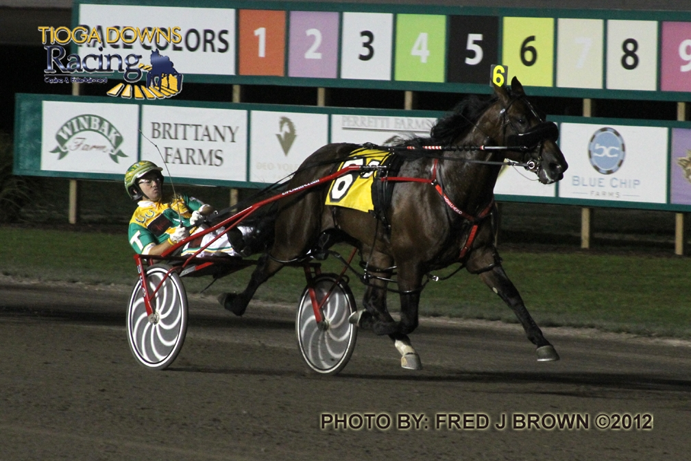 Twinspires Blog Cotolo's Harness Review News And Notesrhblogtwinspires: Harness King Free Picks At Elf-jo.com