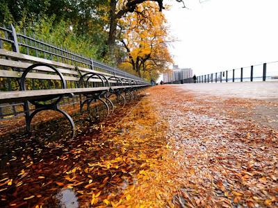 Autumn Season Standard Resolution Wallpaper 28