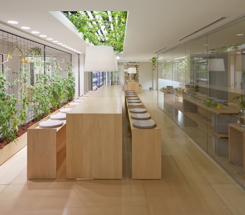 17-Urban-Farm-Building-Architects-Kono-Designs-Pasona-Group-www-designstack-co