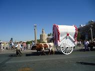 Hermandad de Sevilla hacia el Rocio