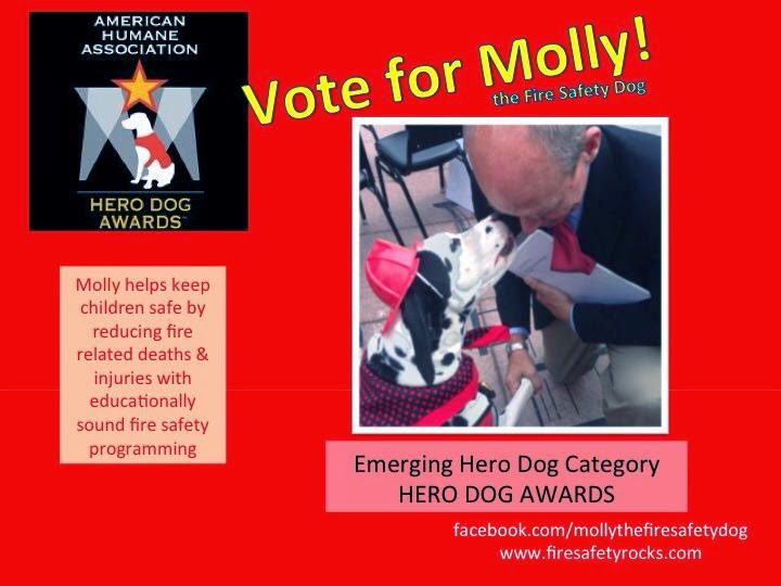 http://www.herodogawards.org/vote/?nominee=16165143