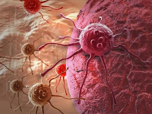 Todo o Câncer pode ser curado entre duas e dezesseis semanas!
