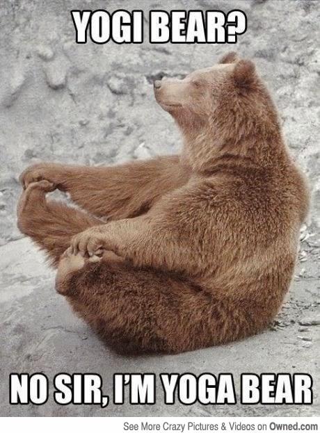 yogi+bear the pink hardhat the hot yoga experience,Hot Yoga Meme