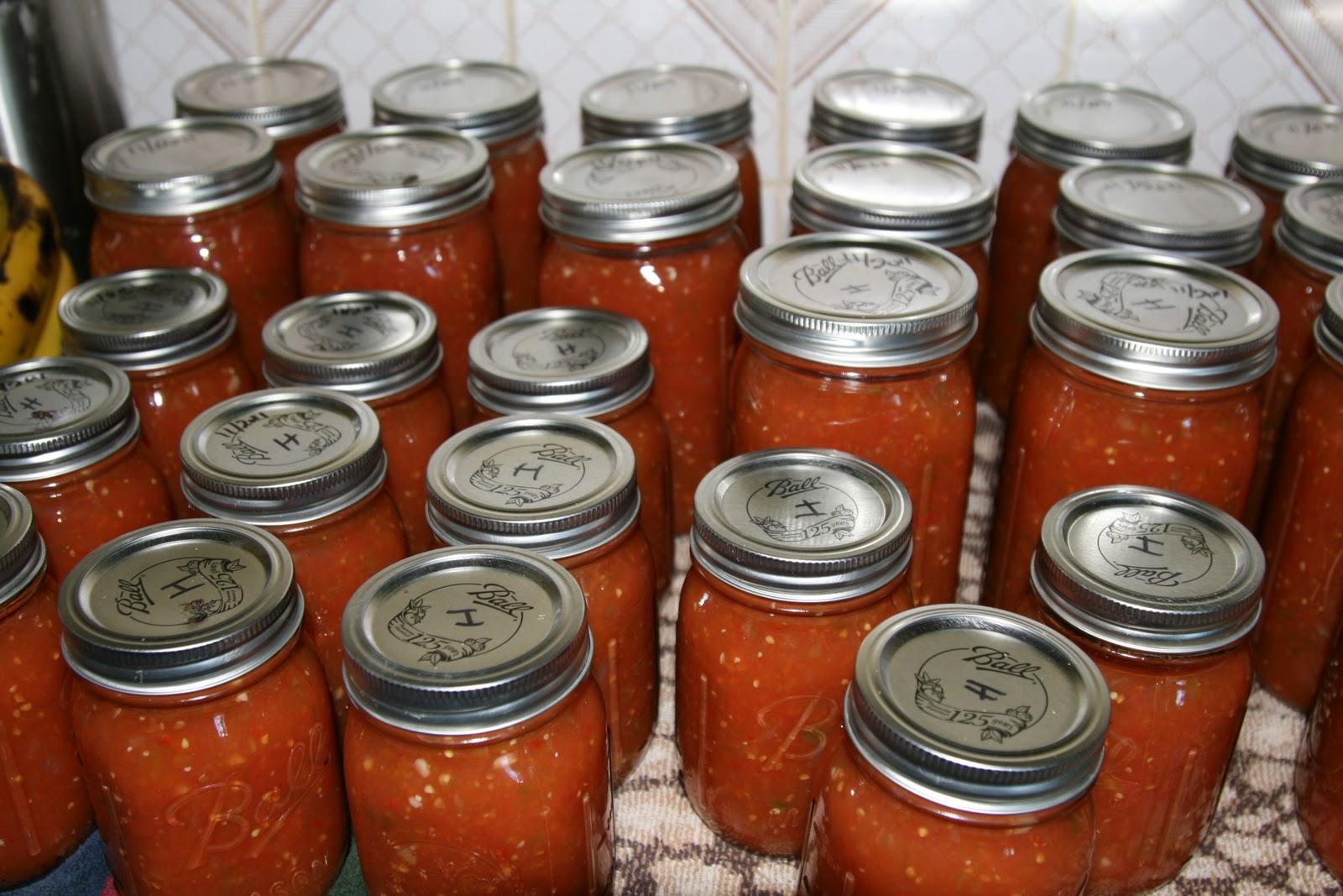 Homemade Hot Sauce ~ Samford Safari