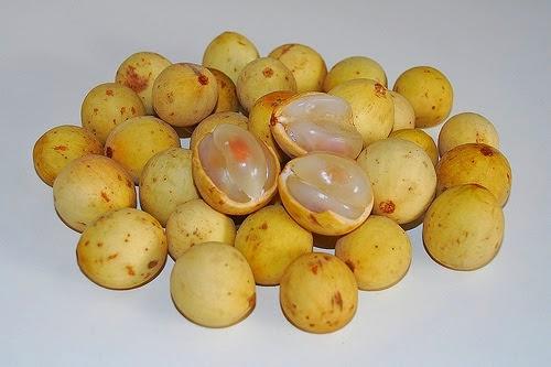 manfaat buah duku, khasiat buah duku, buah duku kaya akan manfaat