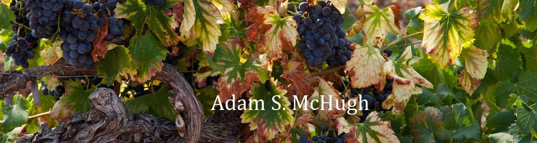 Adam S. McHugh