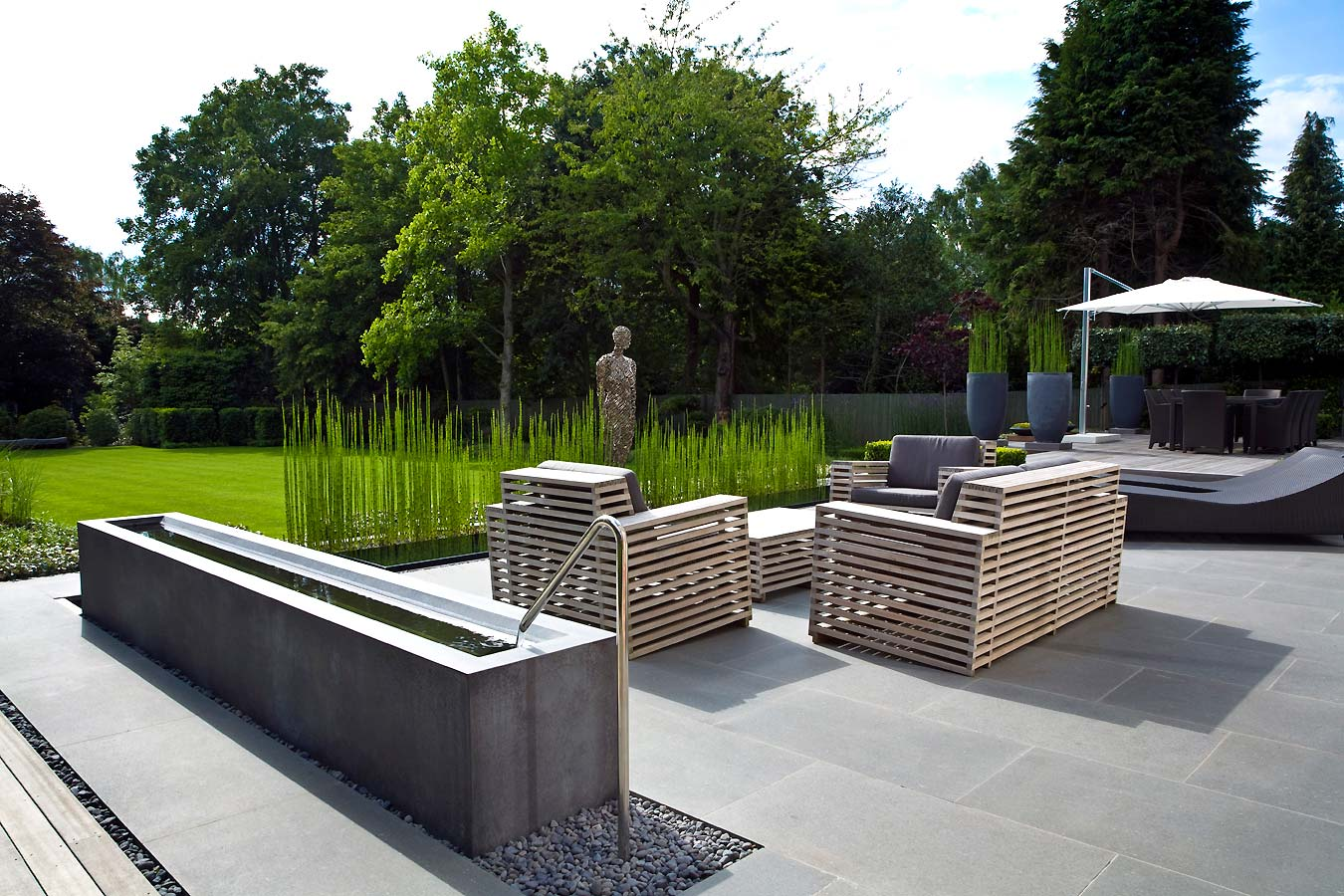 The paper mulberry garden plants equisetum for Modern landscape architecture