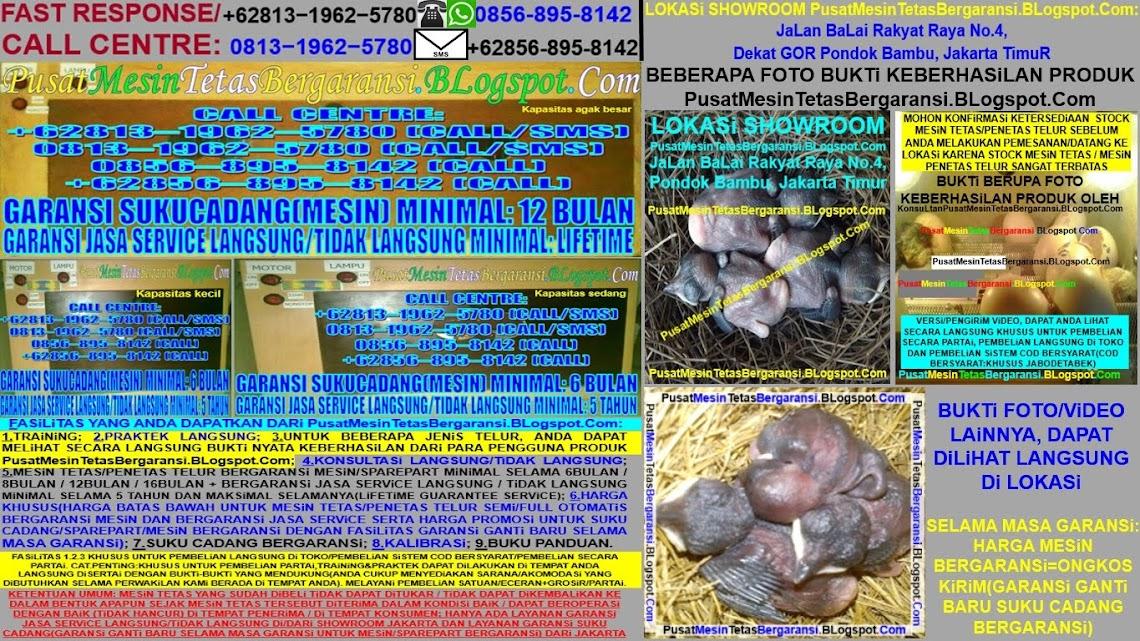 MESIN TETAS / PENETAS TELUR LOVEBIRD FULL OTOMATIS