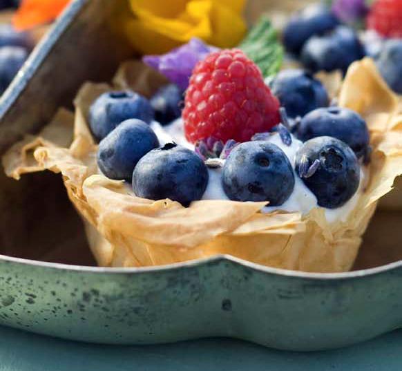 jpg phyllo fruit tart skinny berry phyllo tarts phyllo fruit ...