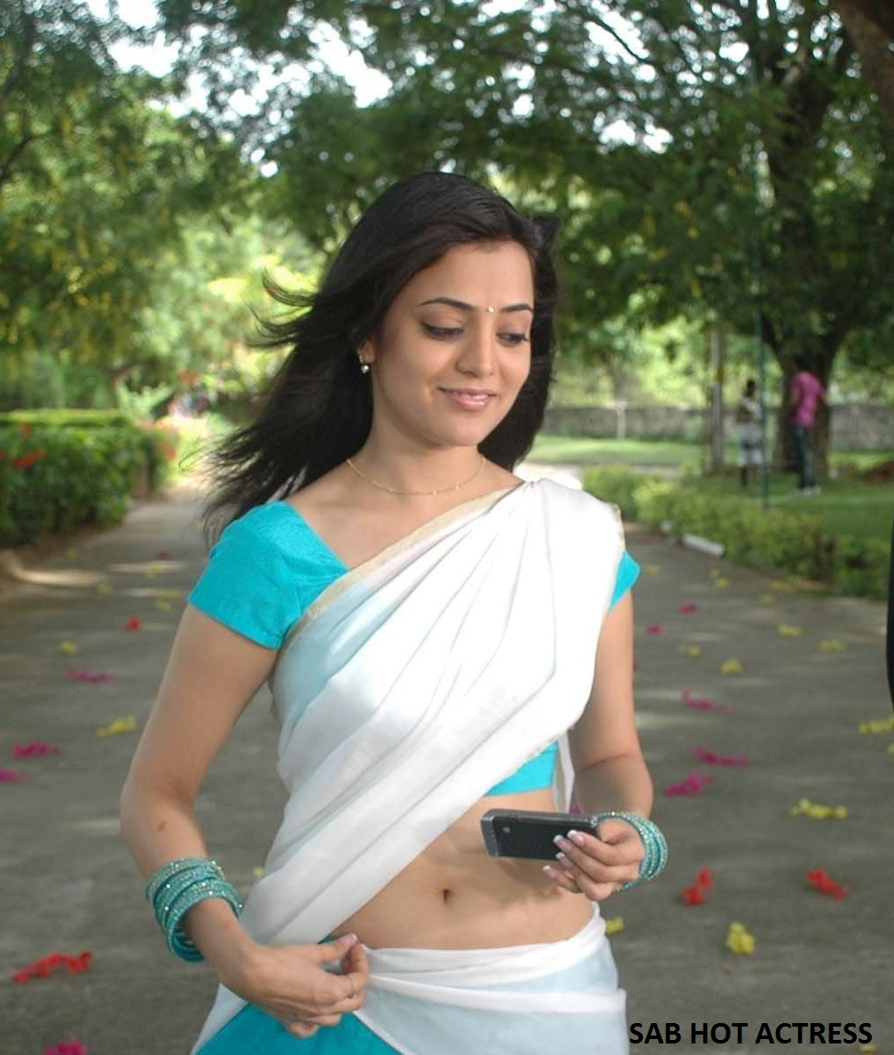 Nisha Agarwal Hot Navel Show Very Rare