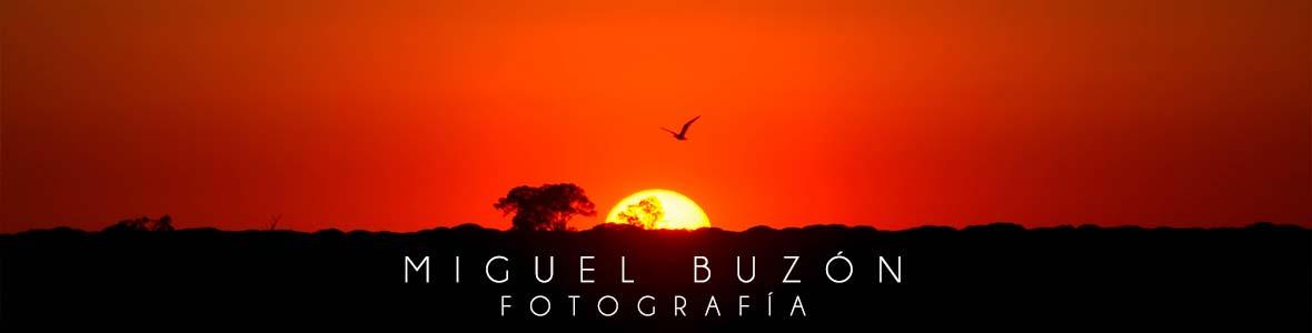 Miguel Buzon Fotografia