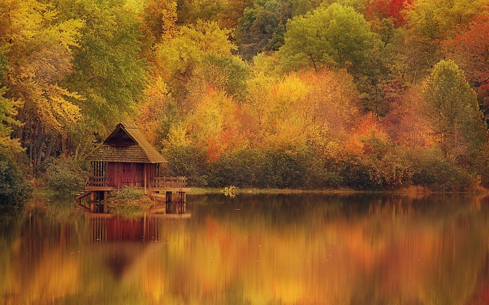 beautiful scene of home - photo #40