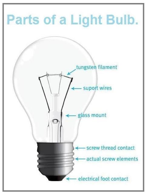 Wwwelizahittmancom Light Bulb Parts End Of