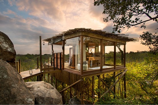 Safari Fusion blog   African treehouses   Stylish tree lodgings at Lion Sands Kingston Treehouse, South Africa