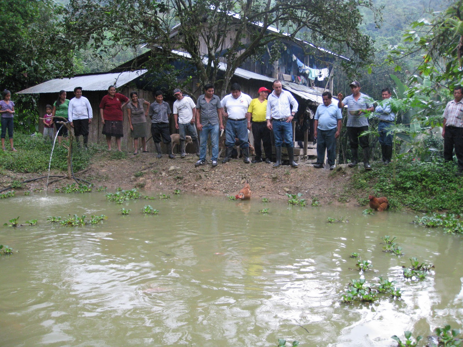 Noticias de la provincia del ca ar prefecto recorri Piscinas para tilapias