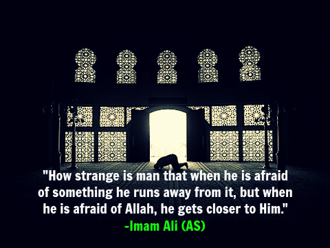 How strange is man that when he is afraid of something he runs away from it, but when he is afraid of Allah, he gets closer to Him. -Imam Ali (AS)