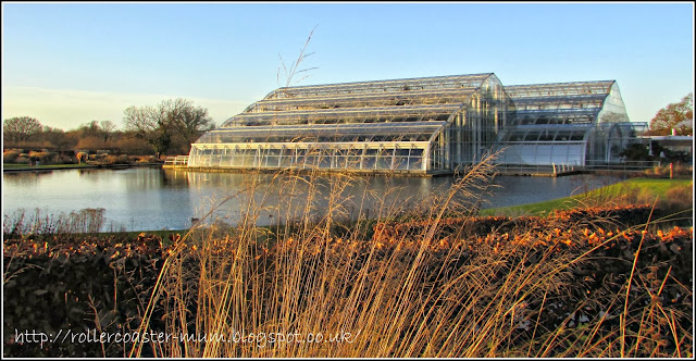 winter view of glasshouse RHS Wisley