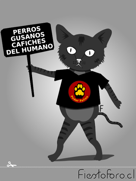gato especista o discriminador por especie que camina con un letrero que dice: «PERROS GUSANOS CAFICHES DEL HUMANO» y tiene una polera con una patita de gato que se lee: «Poder Animal»