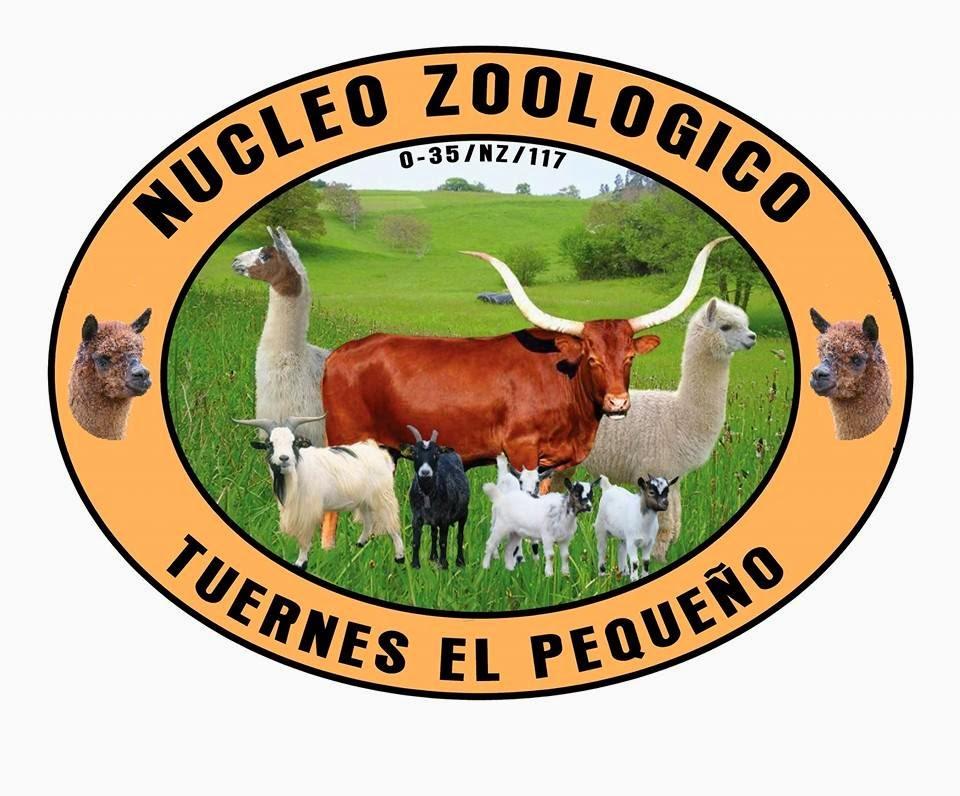 NUCLEO ZOOLOGICO                TUERNES EL PEQUEÑO