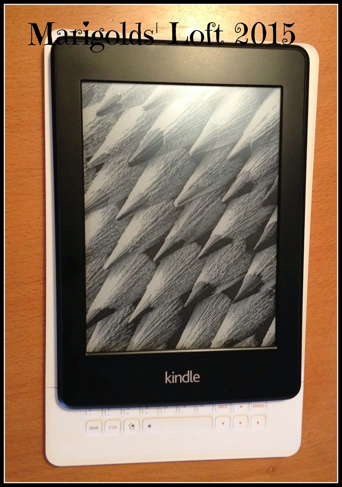 Kindle Paperwhite vs iRiver