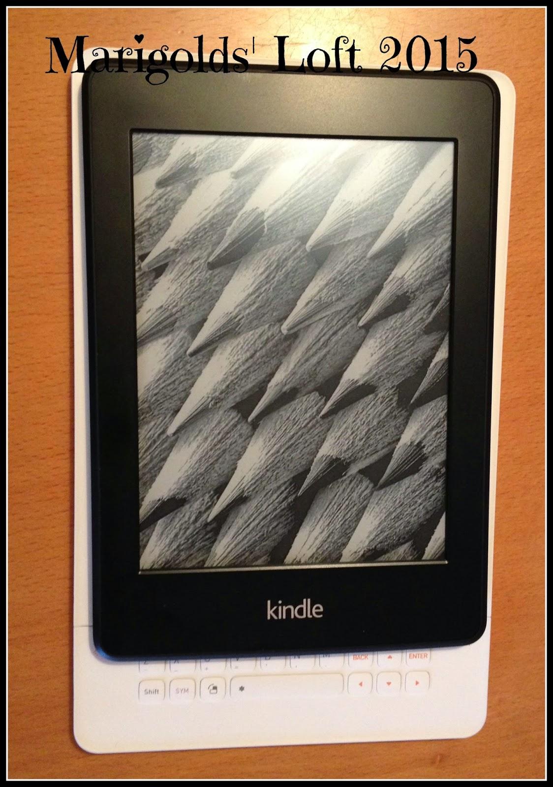 Kindle Paperwhite vs iRiver
