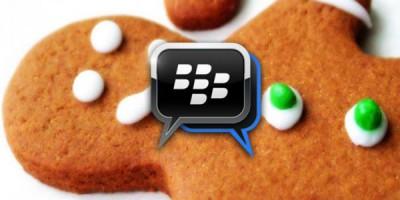 BBM Untuk Android Gingerbread Siap Didownload