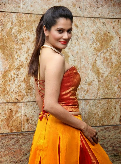 Payal Rohatgi HD Wallpapers Free Download