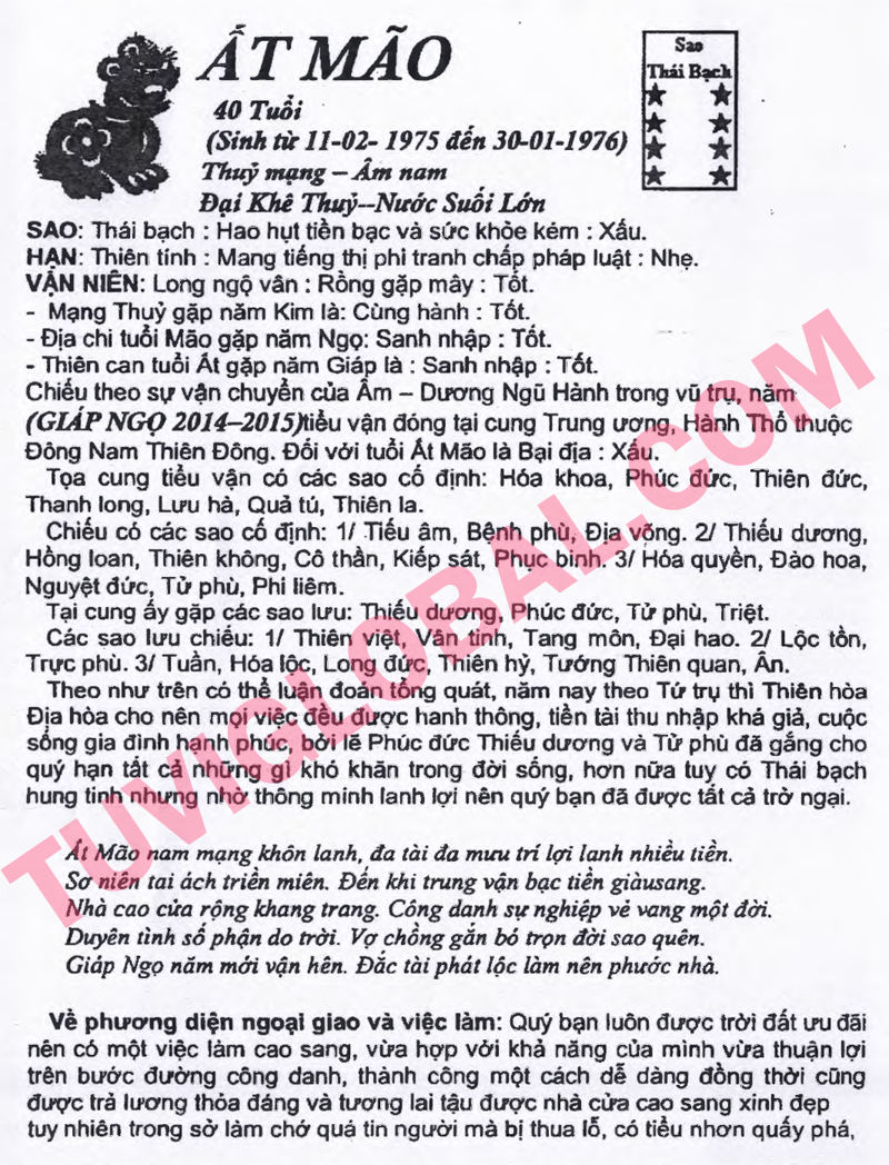 vi tuổi Ất Mão nam mạng - Thái Ất tử vi 2014 Giáp Ngọ