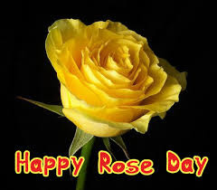 Happy-Rose-Day-2016-Images-Pictures-Status-for-Facebook-Whatsapp-Twitter-12