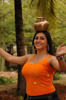2011 namitha wallpapers_hot_HD_wallpapers