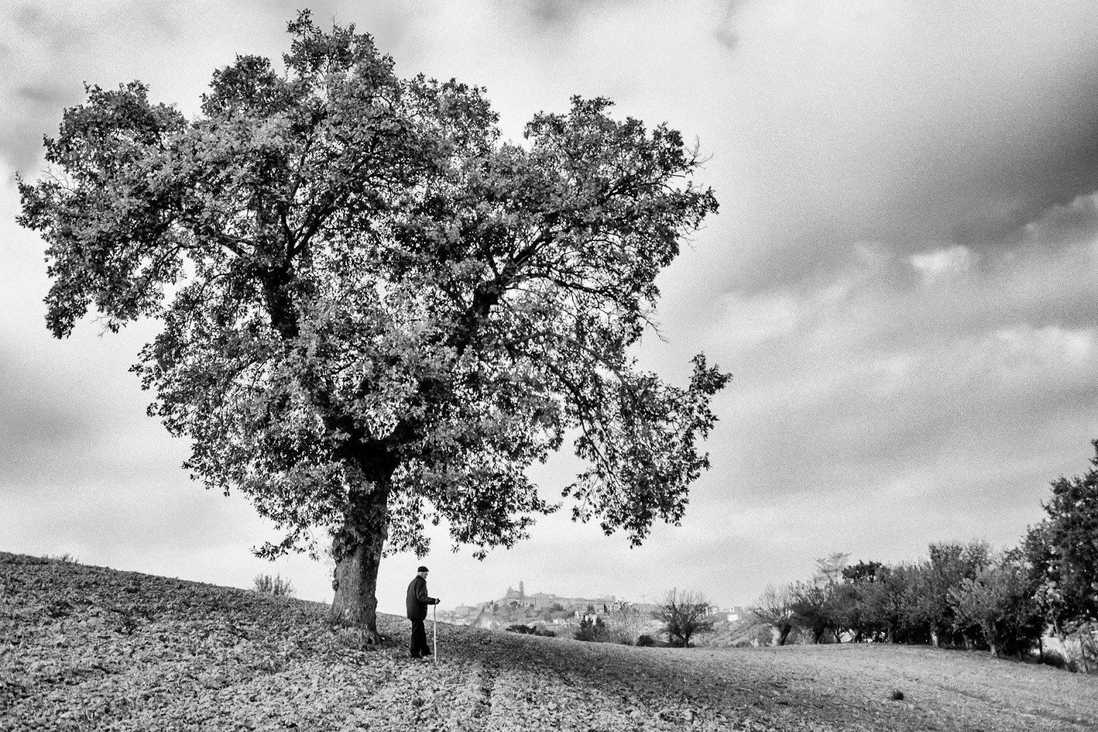 Primo concorso fotografico la marche in bianco e nero for Piani del granaio di campagna