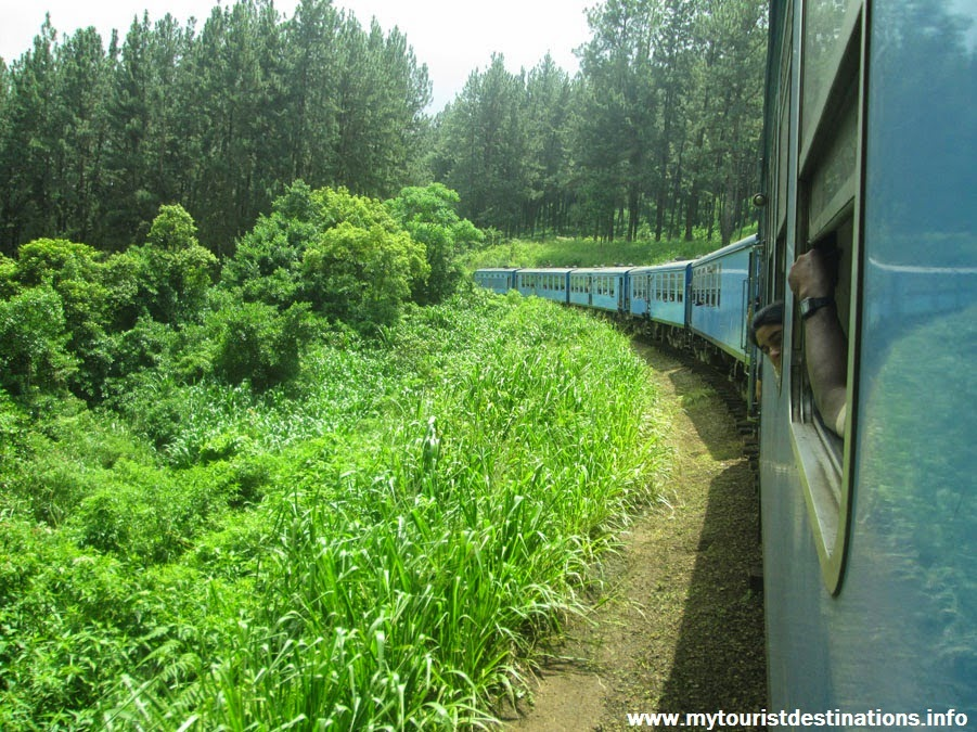 Podi Menike Express Train