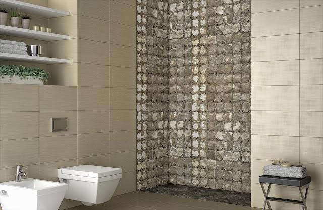 Cómo cambiar tu bañera por un ducha