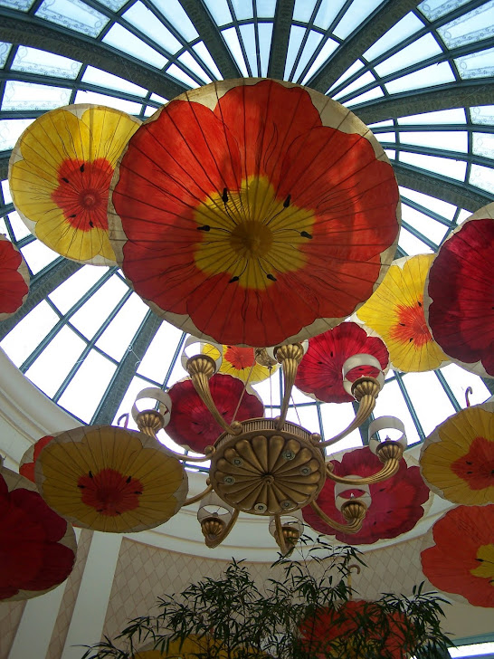 Glass Umbrellas