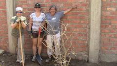 Un arbre pour le jardin de la garderie!!