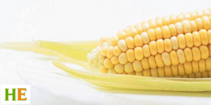 Health Benefits of Maize Meal