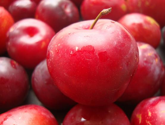 आलू बुखारा फल के फायदे और नाम