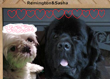 Remington and Sasha