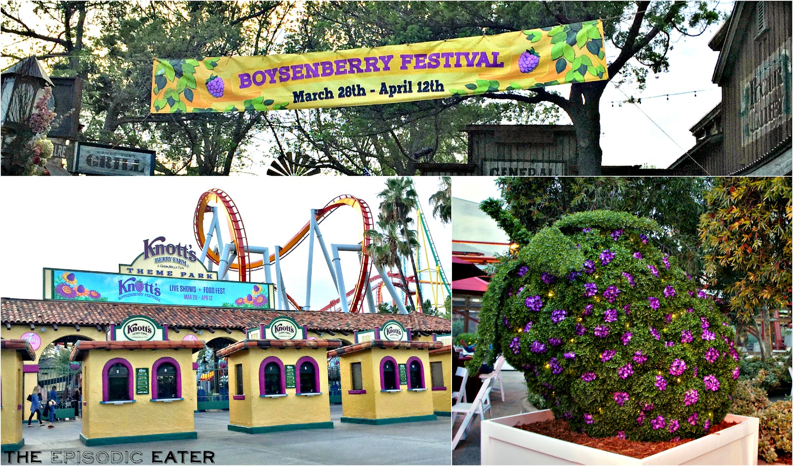 Knott's Berry Farm's Boysenberry Festival on The Episodic Eater! #KnottsSpring