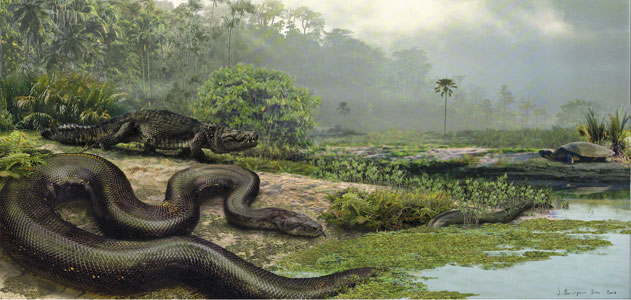 the ecology and importance of snakes Taxa, and it raises important questions about the ecological factors that may con-   overall these studies illustrate how genetic analyses of snakes provide pre.