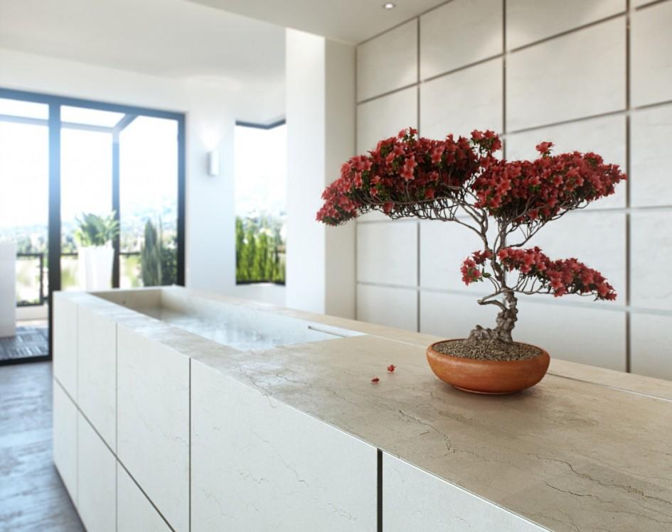 19 interior design using bonsai tree