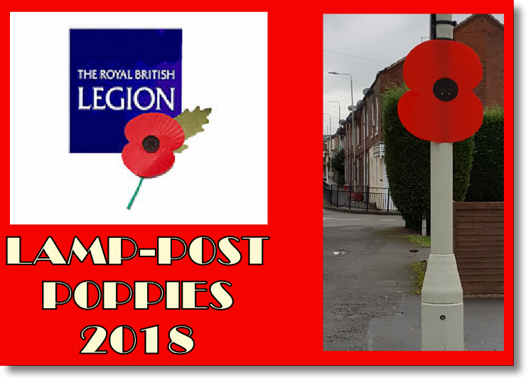 SPONSOR A MIDDLEWICH LAMP-POST POPPY