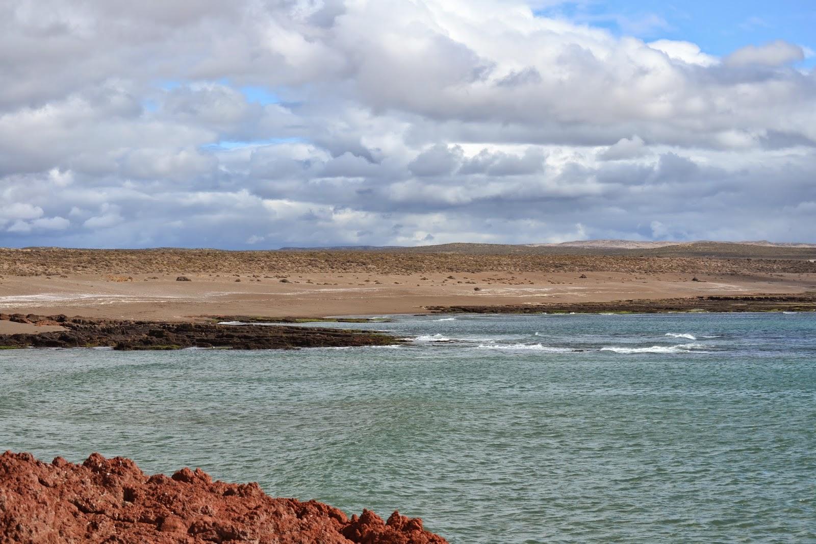 punto tombo patagonia argentina