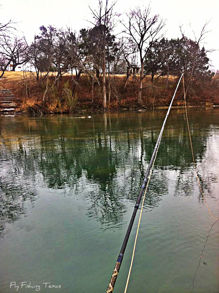 Fly fishing texas first 2013 fish for Fly fishing texas