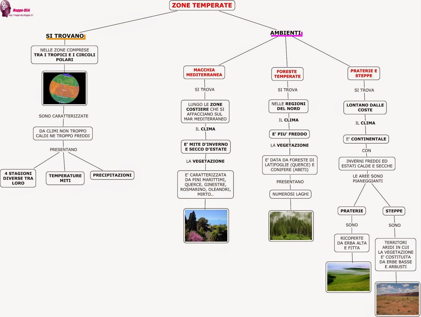 mappa schema geografia dsa zone temperate macchia mediterranea foresta conifere latifoglie prateria steppa