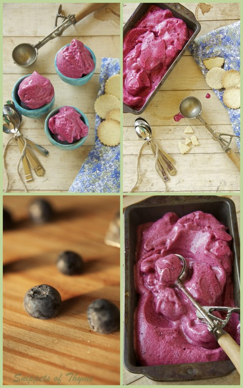 Thyme: Mixed Berry Sorbet and Vanilla Shortbread Cookies