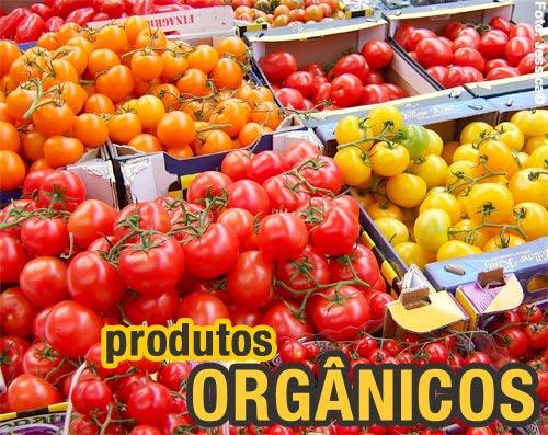 Empresas brasileiras participarão da maior feira de orgânicos da Alemanha